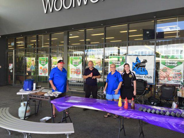 Rottweiler Club, Rottweiler Club of Queensland, Rottweiler, RCQLD