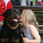 Rottweiler Club of Queensland,