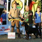 Hammersmark Blazin Firebird show
